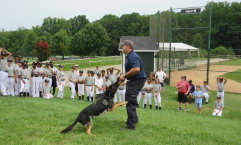 Police officer and his canine partner showing off their skills.