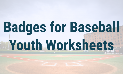 Badges for Baseball Youth Worksheets Header